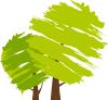 Apartamenty Natura - pinezka